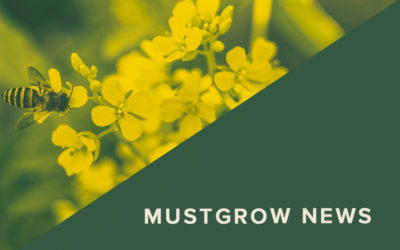 MustGrow Announces Non-Selective Bio-Herbicide Patent Filing and Supportive Efficacy Claims